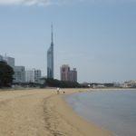 【地行浜いきものプロジェクト】単発講座のご案内
